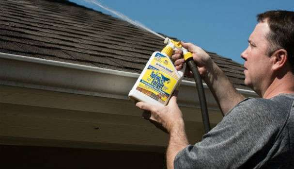 Spray & Forget Roof Cleaner Review