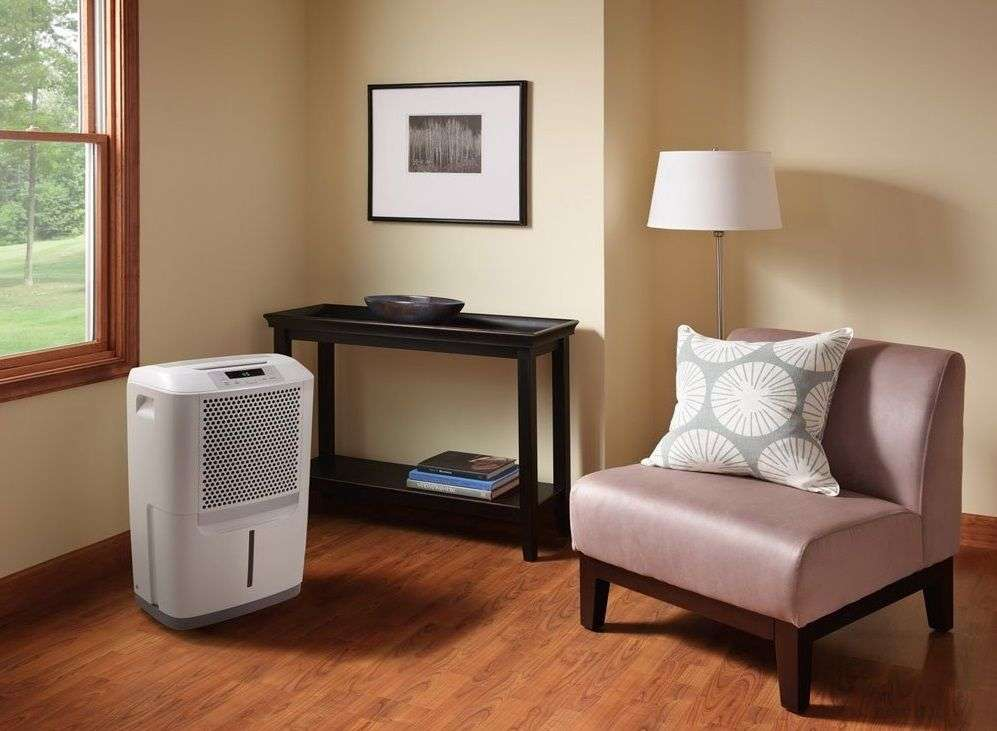Dehumidifier Preventing Mold